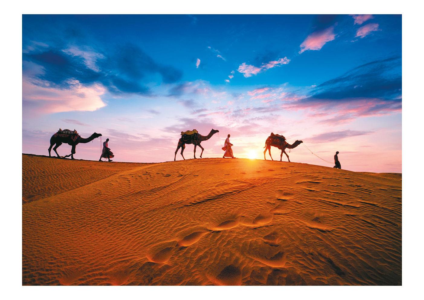 Das Motiv zeigt eine Karawane mit drei Kamelen in der Wüste
